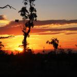 noise monitoring at sunset