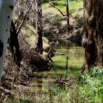 natural stream water monitoring